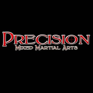 precision front7 300x300 Brian McLaughlin A Lifetime of Martial Arts