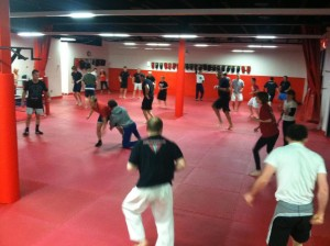 Poughkeepsie Martial Arts 300x224 The Martial Arts and Respect: A Look at the Culture of Precision MMA
