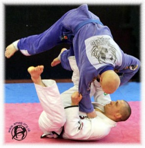 bjj sweep 295x300 Poughkeepsie Martial Arts   The Gentle Art of Jiu Jitsu: From Ancient Japan to Modern Day Poughkeepsie, New York