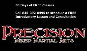 precision30dayfreelogo 300x177 Poughkeepsie Martial Arts   The Gentle Art of Jiu Jitsu: From Ancient Japan to Modern Day Poughkeepsie, New York