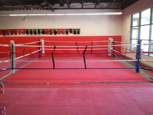 newprecision 300x225 Dutchess County MMA Gym   Precision MMA, the Premier MMA Gym in the Hudson Valley, Undergoes Renovations